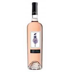 French défilé Vin rosé -...